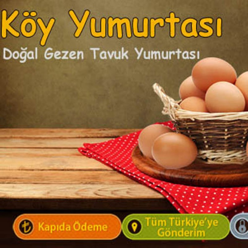 Köy Yumurtası - 15 Adet